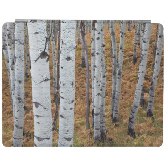 USA, Utah, Uinta-Wasatch-Cache National Forest 2 iPad Cover
