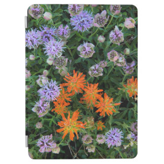 USA, Utah, Uinta-Wasatch-Cache National Forest 3 iPad Air Cover