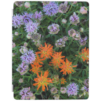 USA, Utah, Uinta-Wasatch-Cache National Forest 3 iPad Cover