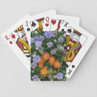 USA, Utah, Uinta-Wasatch-Cache National Forest 3 Playing Cards