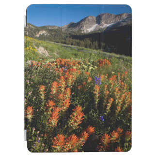 USA, Utah, Uinta-Wasatch-Cache National Forest iPad Air Cover