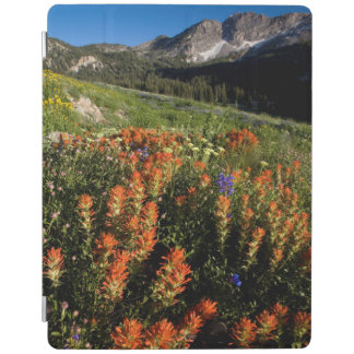 USA, Utah, Uinta-Wasatch-Cache National Forest iPad Cover