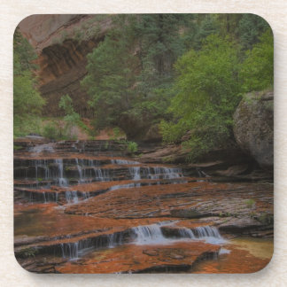 USA, Utah, Zion National Park.  Scenic from the Drink Coaster