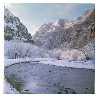 USA, Utah, Zion NP. New snow covers the canyon Tile
