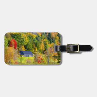 USA, Vermont. Fall foilage along Highway 100. Bag Tag