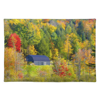 USA, Vermont. Fall foilage along Highway 100. Place Mats