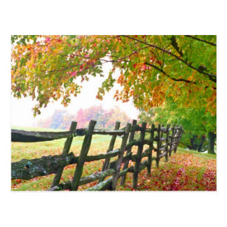 USA, Vermont. Fence under fall foliage. Postcard