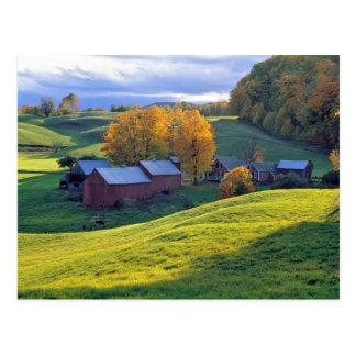 USA, Vermont, Jenne Farm. Rolling green hills Postcard