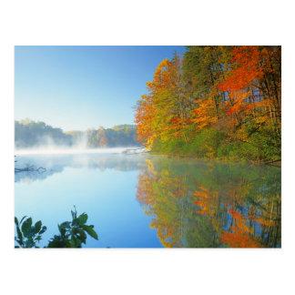 USA, Virginia, Fairy Stone State Park 2 Postcard
