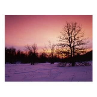 USA, Virginia, Shenandoah National Park, Postcard