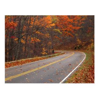 USA, Virginia, Shenandoah National Park, Skyline Postcard