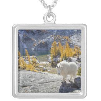 USA, WA, Alpine Lakes WIlderness Enchantments. Personalized Necklace