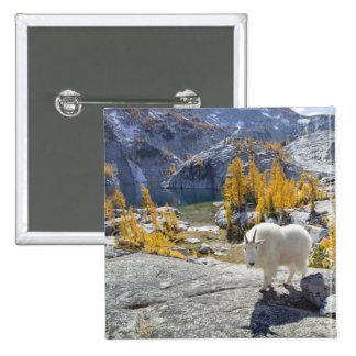 USA WA Alpine Lakes WIlderness Enchantments Pins