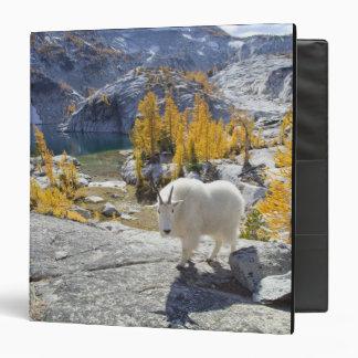 USA, WA, Alpine Lakes WIlderness Enchantments. Vinyl Binder
