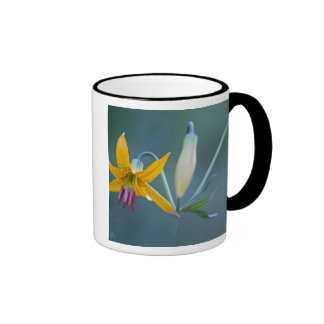USA, WA, Mt. Rainier National Park. Columbia Coffee Mug