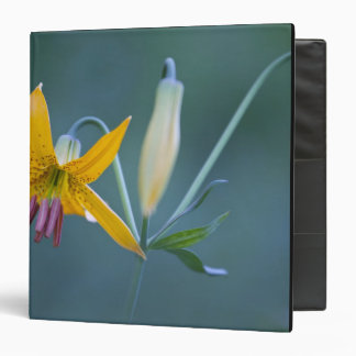 USA, WA, Mt. Rainier National Park. Columbia Vinyl Binders