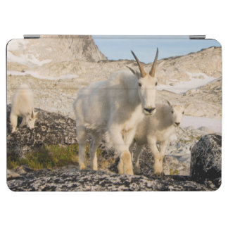 USA, Washington, Cascade Range 2 iPad Air Cover