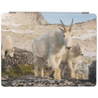 USA, Washington, Cascade Range 2 iPad Cover