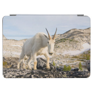 USA, Washington, Cascade Range 3 iPad Air Cover