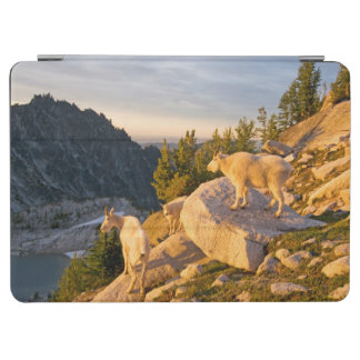 USA, Washington, Cascade Range 4 iPad Air Cover