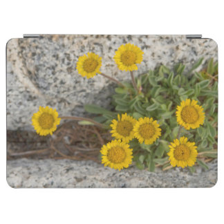 USA, Washington, Cascade Range 5 iPad Air Cover