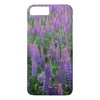 USA, Washington, Clallam County, Lupine iPhone 7 Plus Case