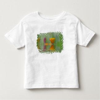 USA, Washington, Close-up abstract of California Toddler T-shirt