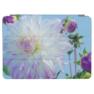 USA, Washington. Detail Of Dahlia Flowers iPad Air Cover