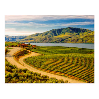 USA, Washington, Lake Chelan. Benson Vineyards Postcard