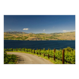 USA, Washington, Lake Chelan. Vineyard Poster
