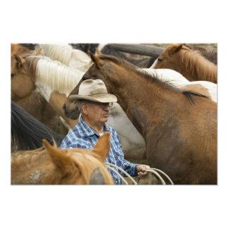 USA, Washington, Malaga, Cowboy foreman on Photo Art