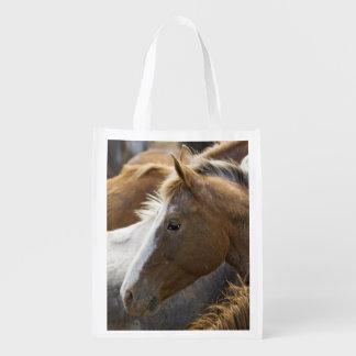 USA, Washington, Malaga, Horse head profile in Market Totes