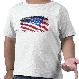USA Washington Moses Lake Flag wall mural on Tshirts
