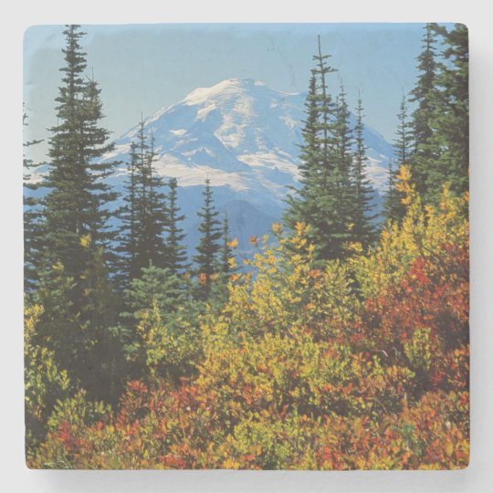 USA, Washington, Mt. Rainier National Park 2 Stone Coaster