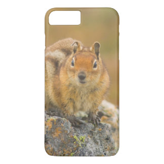 USA, Washington, North Cascades National Park 5 iPhone 7 Plus Case