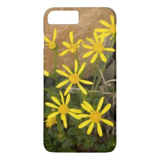 USA, Washington, North Cascades National Park 7 iPhone 7 Plus Case
