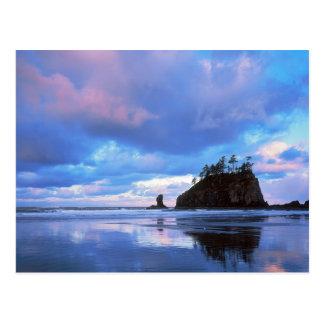 USA, Washington, Olympic National Park 2 Postcard