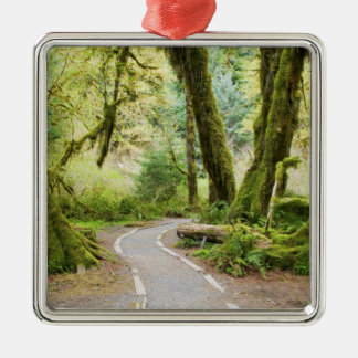 USA, Washington, Olympic National Park, Hiking Metal Ornament