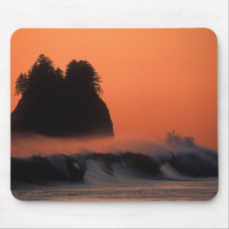 USA, Washington, Olympic National Park, Sea Mouse Pad