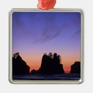 USA, Washington, Olympic National Park, Shi-shi Metal Ornament