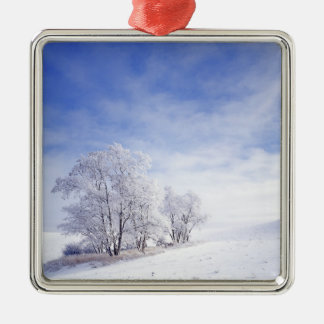 USA, Washington, Palouse Area, Frosted Black Metal Ornament