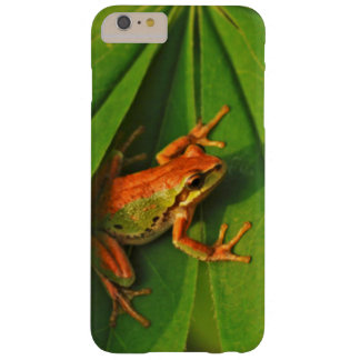 USA, Washington, Seattle, Discovery Park 2 Barely There iPhone 6 Plus Case