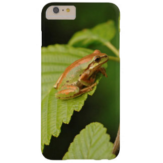USA, Washington, Seattle, Discovery Park Barely There iPhone 6 Plus Case