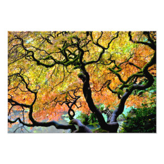 USA, Washington, Seattle, Kubota Garden. Photo Art