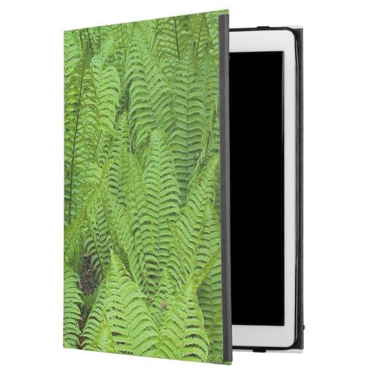 """USA, Washington, Seattle, Washington Park iPad Pro 12.9"""" Case"""