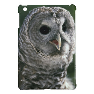USA, Washington State. Barred Owl (Strix varia) iPad Mini Cases
