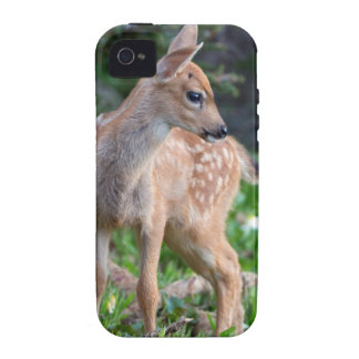 USA, Washington State. Blacktail Deer Fawn Case-Mate iPhone 4 Cover