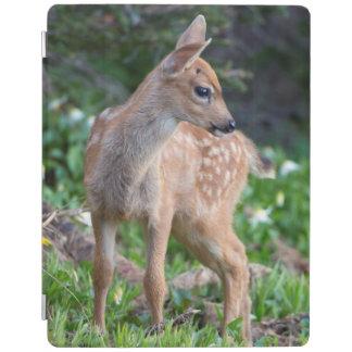 USA, Washington State. Blacktail Deer Fawn iPad Cover