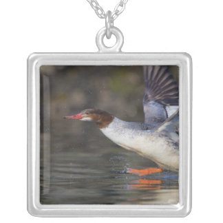 USA, Washington State,Common Custom Necklace