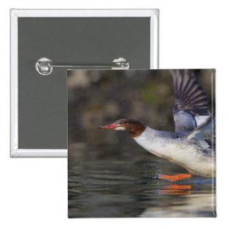 USA Washington State Common Pins